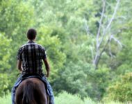 new england horse ride hotel package