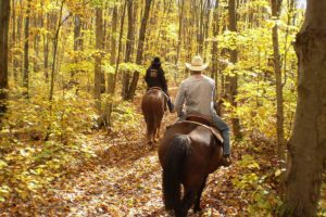 horse trail ride hotel package